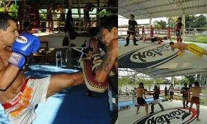 intensive body conitioning and sparring -- muay thai training Phuket