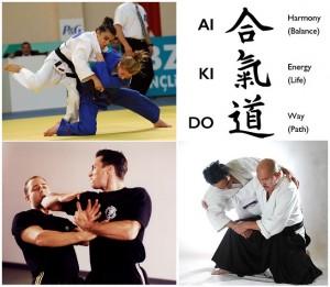 krav maga, judo, aikido -- Muay Thai boxing gym Phuket