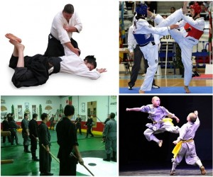 kungfu, Taekwondo, Ninjutsu, Jujutsu -- Muay Thai training camp Phuket